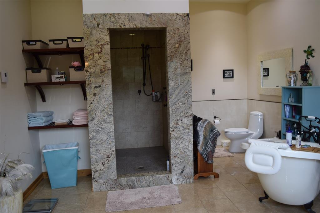 View 3 - Walk in Spa Shower!
