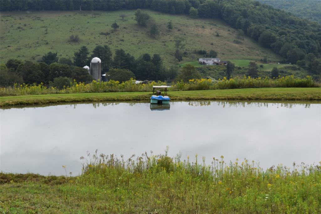 Enjoy the pond and views!